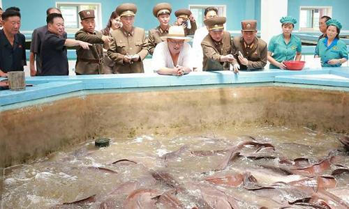Lãnh đạo Triều Tiên Kim Jong-un (áo trắng ở giữa) đi thị sát tại một trang trại cá ở tỉnh Hwanghae. Ảnh: KCNA.