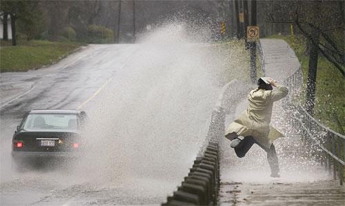 Làm bắn nước lên người đi bộ, tài xế ở Anh, Canada và Nhật Bản có thể bị phạt tiền và trừ điểm bằng lái. Ảnh: Twitter.