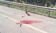 Án chung thân cho người vi phạm tông chết trung tá cảnh sát trên cao tốc