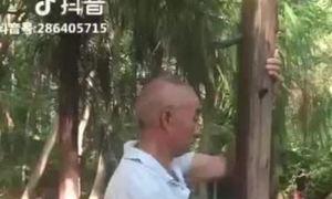 'Cao thủ' tay bám cột chân luyện khinh công ở Trung Quốc