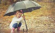 Ô che mưa là 'cột thu sét' đúng không?