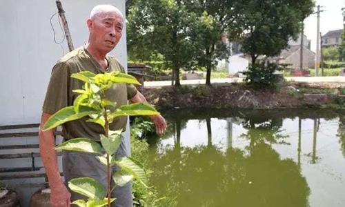 Ông Hứa đứng bên dòng sông nơi cậu bé 8 tuổi rơi xuống. Ảnh: Shanghaiist.