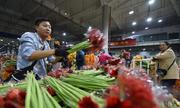 Chợ hoa lớn nhất châu Á của Trung Quốc xuất khẩu tới 50 nước