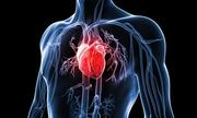 Có phải tim không bao giờ bị ung thư?