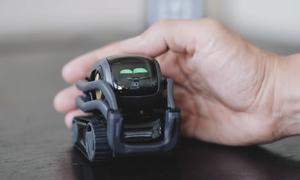Robot cún cưng biết biểu hiện cảm xúc
