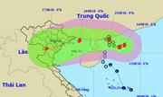 Áp thấp nhiệt đới ở biển Đông mạnh lên thành bão