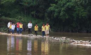 Trẻ em vượt sông bằng cầu tre đến trường ở Lạng Sơn