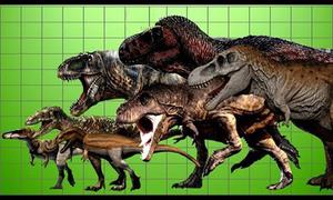 So sánh chiều dài và cân nặng các loài bạo long