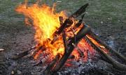Điều gì xảy ra nếu con người không phát hiện ra lửa?
