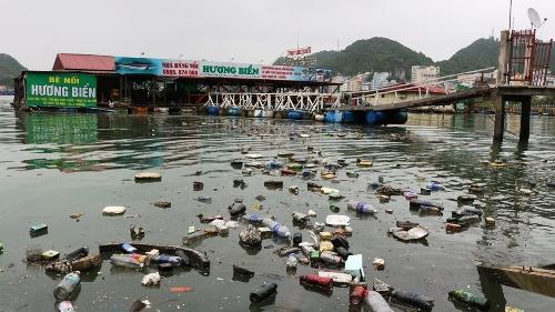 Mặt vịnh Cát Bà tràn ngập các loại rác thải. Ảnh: Giang Chinh