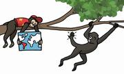 Nguyên nhân một số loài khỉ có đuôi như cánh tay thứ ba