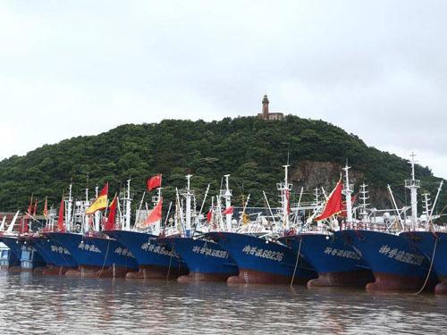 Tàu đánh cá neo đậu tại một cảng ở Thượng Hải hôm 16/8 trước khi bão Rumbia đổ bộ. Ảnh: Eastern Riverina.