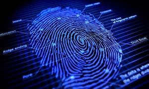 Vì sao dấu vân tay dùng trong điều tra tội phạm?