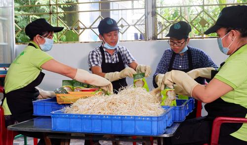 Giá sạch của anh Vũ bỏ mối cho các siêu thị, cửa hàng rau sạch trên địa bàn thành phố Cần Thơ với giá bán từ 12.000 đồng đến15.000 đồng mỗi cân. Hiện anh Vũ tiếp tục nghiên cứu để cho ra sản phẩm máy làm giá đỗ gia đình nhỏ gọn hơn.
