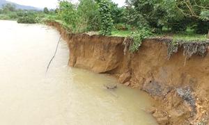 Cây trồng, trụ điện trôi xuống sông ở Lâm Đồng