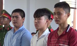 6 người lĩnh án vì gây rối ở Ninh Thuận