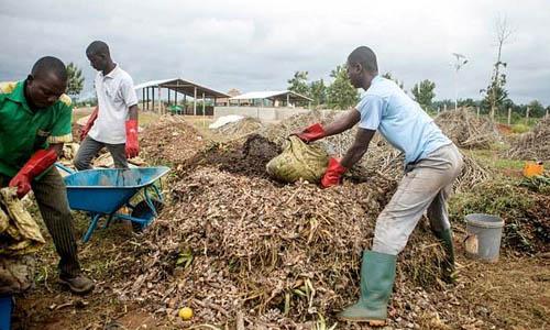 Các nhân viên làm việc tại trung tâm xử lý rác thải do quỹ ReBin thành lập. Ảnh: AFP.
