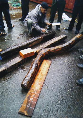 Một phần số gỗ tang vật của vụ án trước khi bán đấu giá. Ảnh: N.T.