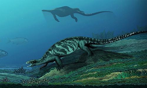 Hình ảnh phục dựng của loài rùa mới được phát hiện. Ảnh: China Daily.