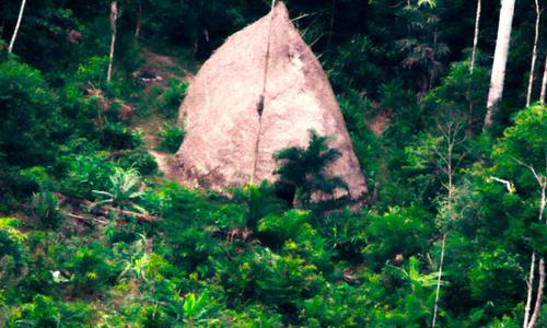 Cấu trúc giống túp lều tranh trong khu rừng gần biên giới Peru. Ảnh: Funai.