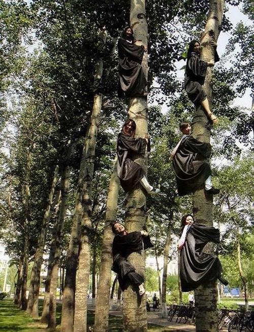 Biệt đội ninja nữ.