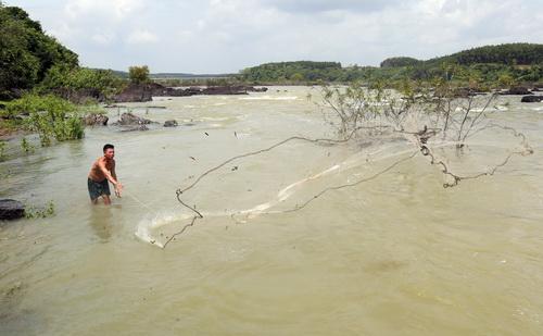 Nhiều người dân đến 2 bên bờ sông gần thân đập thủy điện bắt cá. Ảnh: Phước Tuấn
