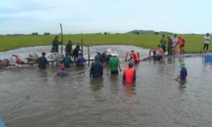 Hàng trăm người tại An Giang giữ đê, cứu lúa