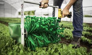 Thiết bị thu hoạch 80 kg rau mỗi giờ