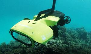 Australia ra mắt robot diệt sao biển bảo vệ san hô