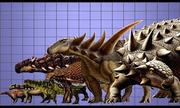 So sánh kích thước các loài giáp long