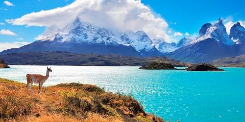 Cảnh quan Chile. Ảnh:Aliwen Incoming