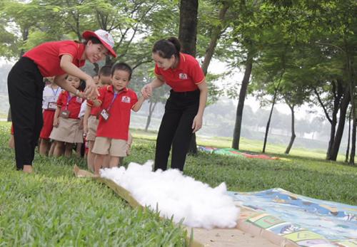 Ngay từ cấp mầm non, các bé đã được học tập trong một môi trường giáo dục ưu việt, tiêu chuẩn quốc tế.