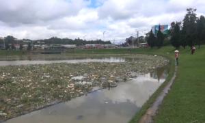 Rác thải đổ về hồ Xuân Hương sau trận mưa lớn