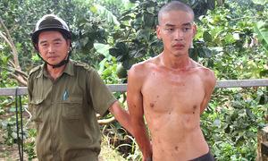 Trộm bưởi hoành hành ở Bà Rịa - Vũng Tàu
