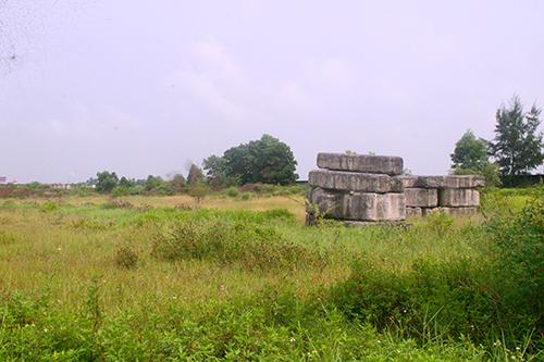 Khu đất để xây bệnh viện bỏ hoang, cỏ mọc um tùm. Ảnh: Đức Hùng