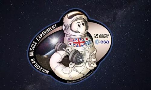 Logo dự án Thí nghiệm phân tử cơ. Ảnh: ESA.