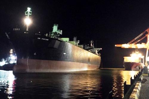 Tàu UNI FORTUNE neo đậu ở cảng Quy Nhơn. Ảnh: Thạch Thảo.