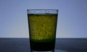 Ba thí nghiệm vui với nước bạn có thể thực hiện ở nhà
