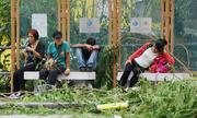 Dân Hong Kong chật vật tìm đường đi làm sau bão Mangkhut