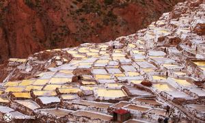 Ruộng muối bậc thang 500 năm tuổi trên sườn núi Peru