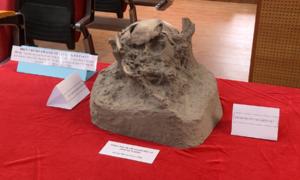 Phát hiện 3 di cốt người tiền sử tại Đăk Nông