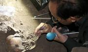 Sọ người 7.000 năm ở Đăk Nông được xác định bằng cách nào?