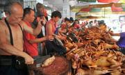 Cẩu tặc ngày càng nhiều là do người Việt ăn thịt chó?