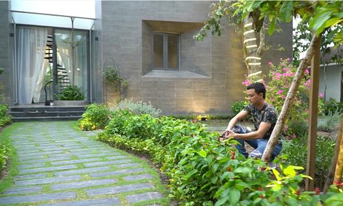 Nhà vườn 500m2 của Cao Thái Sơn