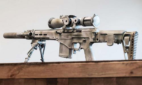 Phiên bản SVCh-308 dùng đạn .308 Winchester. Ảnh: RBTH.