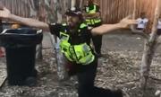 Nhân viên y tế Australia bị đình chỉ vì nhảy múa tại nhạc hội có người chết