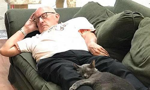 Ông Laurmen thường xuyên ngủ gật trong trại cứu hộ mèo. Ảnh: CNN.