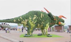 Bức tượng bằng rau củ tươi lập kỷ lục Guinness