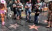 Ngôi sao Trump trên Đại lộ Danh vọng bị gắn song sắt