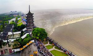 Sóng triều ồ ạt ngược dòng sông Tiền Đường vào dịp Trung thu